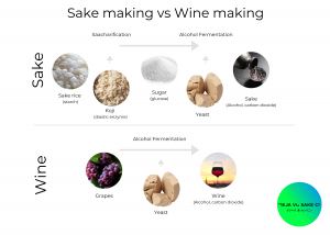 Sake vs Wine Making