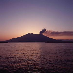 Shochu Island